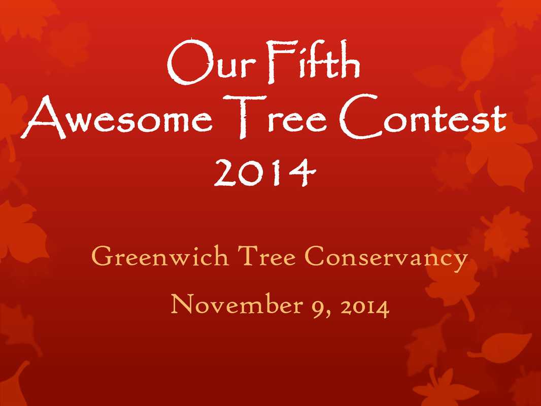 Fifth Annual Awesome Tree Contest Awards